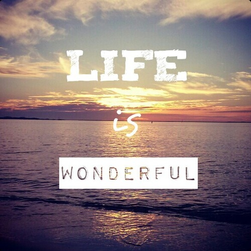 111712-Life-Is-Wonderful